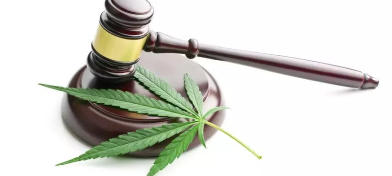 Cannabis: Certain articles of the Quebec law invalidated by the Superior Court